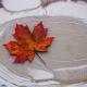 Maple leaf on frozen puddle