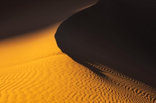Namibia_Allofs_2019_0443