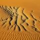 Namibia_Allofs_2019_3098