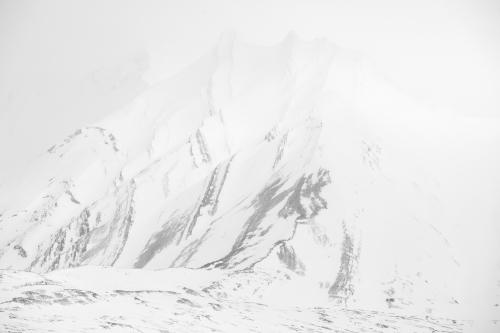 Svalbard_Allofs_2019_05_1175