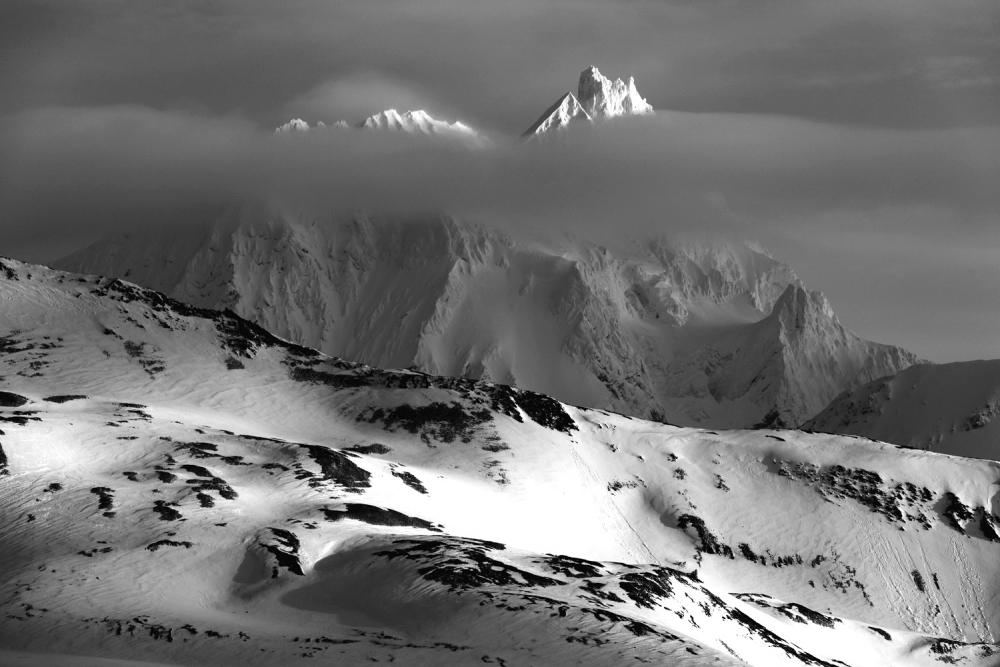 Svalbard_Allofs_2019_05_1309