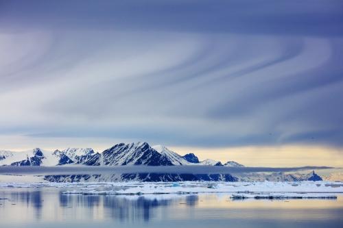 Svalbard_Allofs_2019_06_0878